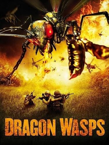 Огнедышащие осы / Дьявольские осы / Драконовые осы